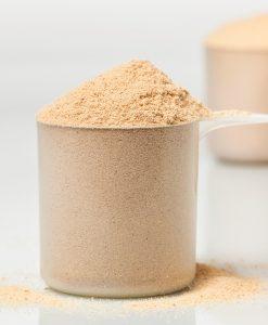 paleo-protein-scoop-ancient-cacao